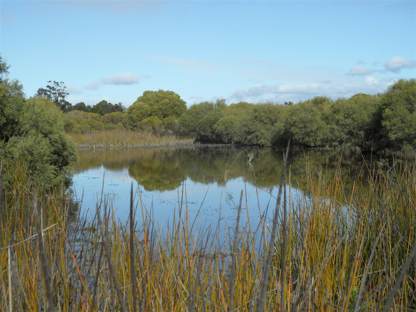 Increase in Area for the Kemerton Nature Reserve