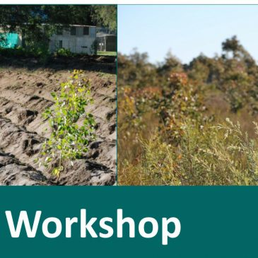 Revegetation Workshop (May 2019)